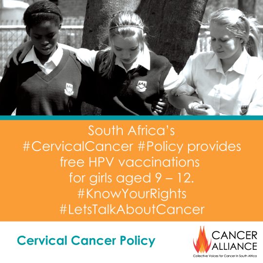 CA-Cervical-Cancer-Toolkit-1-the-new-policy-1