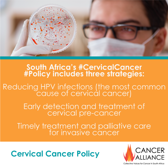 CA-Cervical-Cancer-Toolkit-1-the-new-policy-6
